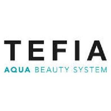 Изображение для категории TEFIA